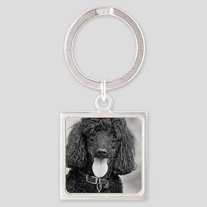 Black Poodle Square Keychain