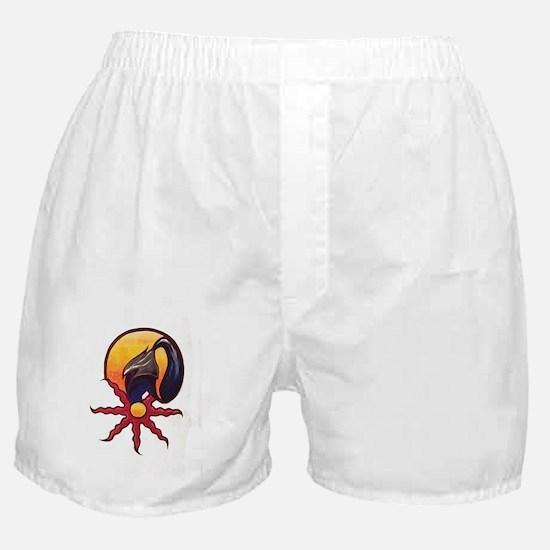 Praise The Sun Boxer Shorts
