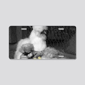 Black and White Silkie Chic Aluminum License Plate