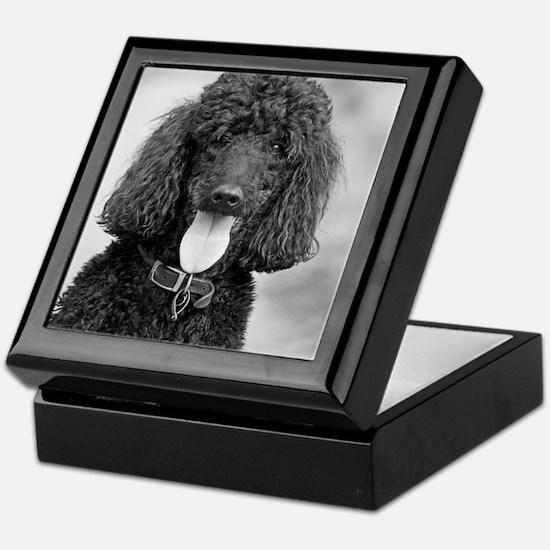 Black Poodle Keepsake Box