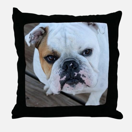 English Bulldog Throw Pillow