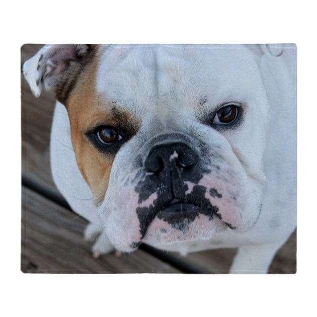 english bulldog blanket english bulldog throw blanket by admin cp6582520 607