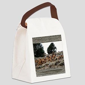 Old Cabin Window elk herd Canvas Lunch Bag