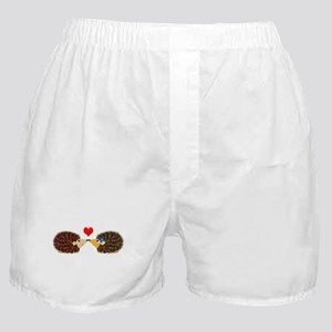 Cuddley Hedgehog Couple with Heart Boxer Shorts