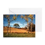 Konza Prairie Greeting Cards (Pk of 10)