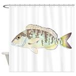 Pigfish Shower Curtain