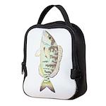 Pigfish Neoprene Lunch Bag