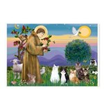 Stfrancis-Lab & Sheltie Postcards (package Of
