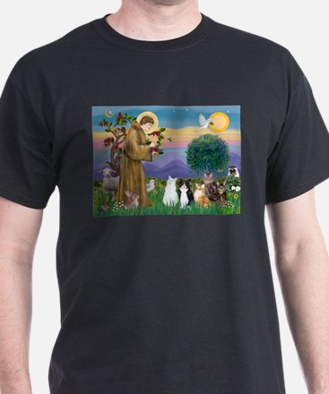 StFrancis-Lab & Sheltie T-Shirt