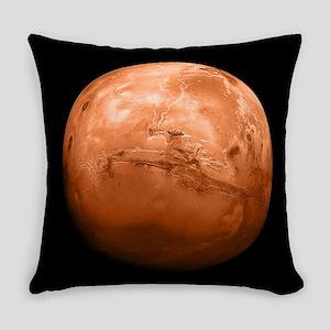 mars-new_b Master Pillow