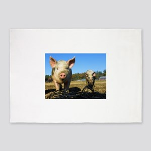 pigs2 5'x7'Area Rug