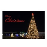 Christmas Tree in Conroe Tx Postcards (Package of