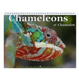Chameleon Calendars