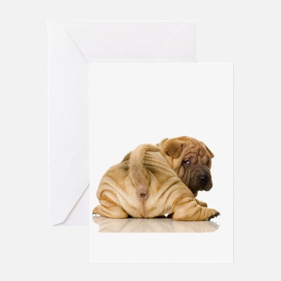 Sharpei Greeting Cards