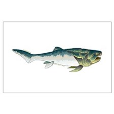 Dunkleosteus fish Posters