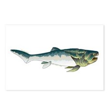 Dunkleosteus fish Postcards (Package of 8)