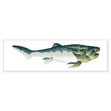 Dunkleosteus fish Bumper Sticker