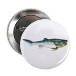 Dunkleosteus fish 2.25