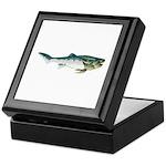 Dunkleosteus fish Keepsake Box