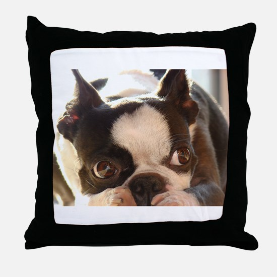 Adorable Jewels Throw Pillow