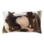 Adorable Jewels Pillow Case