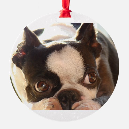 Adorable Jewels Ornament