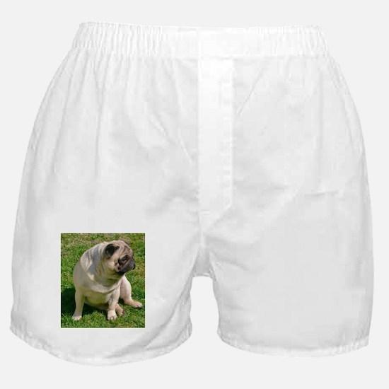 Sitting Fawn Pug Boxer Shorts