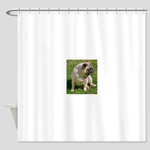 Sitting Fawn Pug Shower Curtain