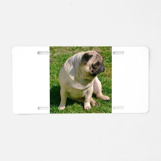 Sitting Fawn Pug Aluminum License Plate