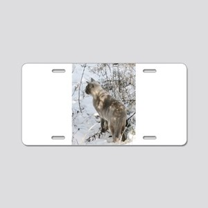Burmese Cat in snow Aluminum License Plate