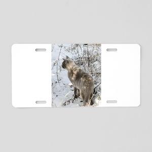 Burmese Cat in snow Aluminum License Plate