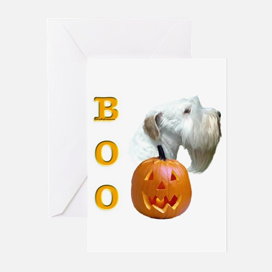Sealy Boo Greeting Cards (Pk of 10)