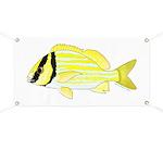 Porkfish Banner