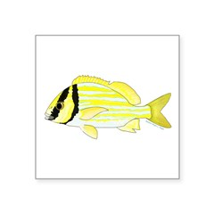 Porkfish Sticker