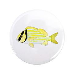 Porkfish 3.5