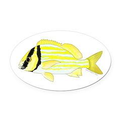 Porkfish Oval Car Magnet