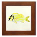 Porkfish Framed Tile