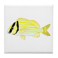 Porkfish Tile Coaster