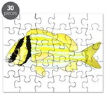 Porkfish Puzzle
