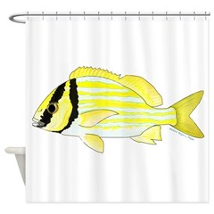 Porkfish Shower Curtain