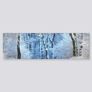 Another Winter Wonderland Bumper Sticker