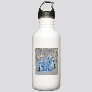 Another Winter Wonderl Stainless Water Bottle 1.0L