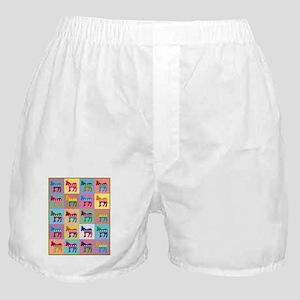 Pop Art Democrat Donkey Logo Boxer Shorts