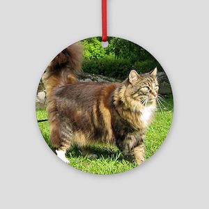 norwegian forest cat full tabby Ornament (Round)