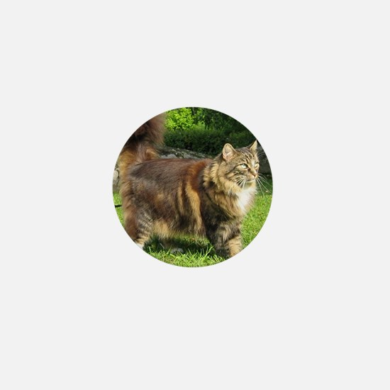 norwegian forest cat full tabby Mini Button