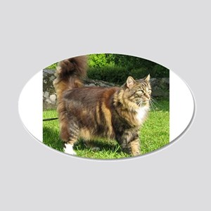 norwegian forest cat full tabby Wall Decal