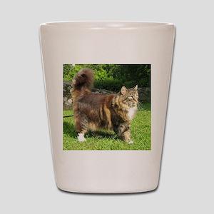 norwegian forest cat full tabby Shot Glass