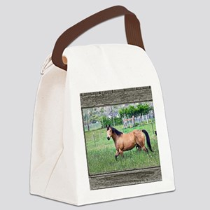 Old window horse 2 Canvas Lunch Bag