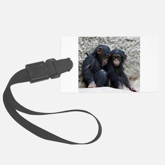 Chimpanzee002 Luggage Tag