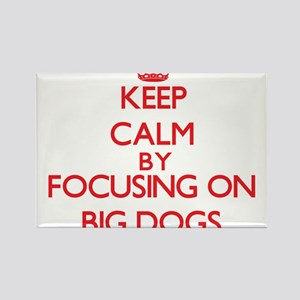 Keep Calm by focusing on Big Dogs Magnets